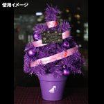 【乃木坂46】売れ残ったツリーが福袋に入ってやってくる可能性は…さすがにない…よね…?