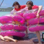 【乃木坂46】沖縄、浮き輪相撲もやってくれるかな…(*´∀`*)