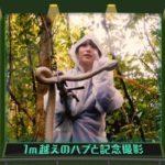 【乃木坂46】乃木中スタッフさん、バナナムーン大好きすぎるだろwww