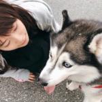 【元乃木坂46】まいまいインスタの犬がちょっと怖いw