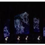 【乃木坂46】生駒里奈 卒業コンサート「あらかじめ語られるロマンス」動画キタ━━━━(゚∀゚)━━━━!!
