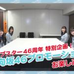 【衝撃】カップスター・和ラーの新プロモが日向坂に決定wwwwwww